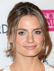 Stana Katic styled her hair into a ponytail with face-framing tendrils for the 'White Bird in a Blizzard' premiere.