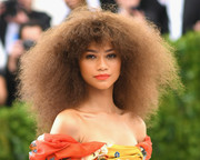 Zendaya Coleman was a natural beauty with her afro at the 2017 Met Gala.
