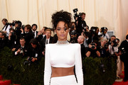 Rihanna Crop Top