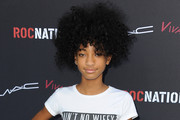 Willow Smith Picture