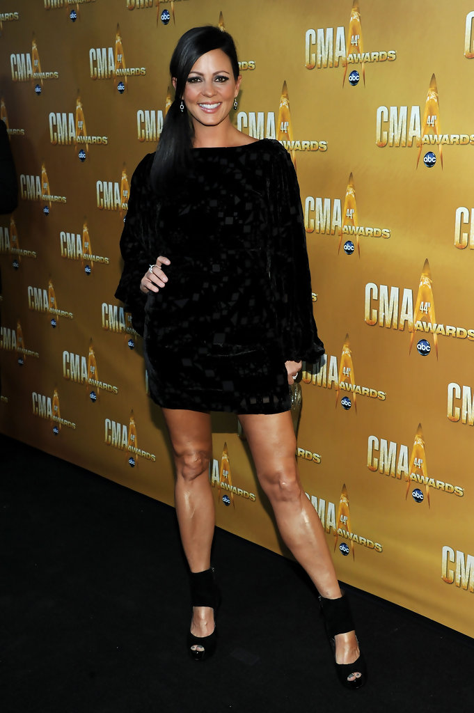 Sara Evans Cocktail Dress Sara Evans Looks Stylebistro