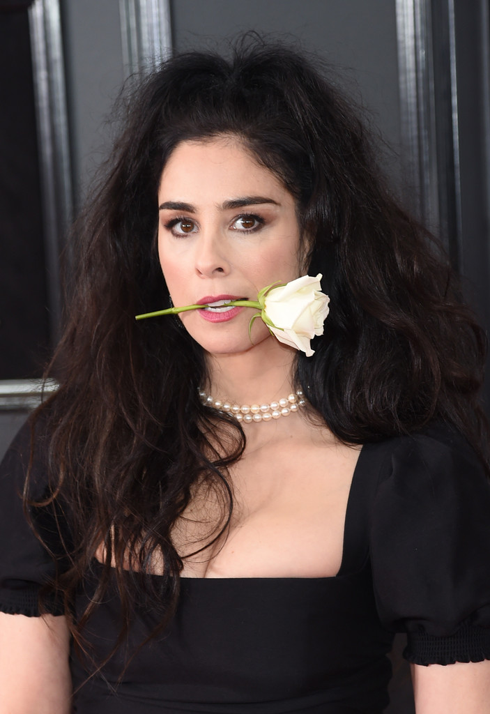 Sarah Silverman Half Up Half Down Hair Lookbook