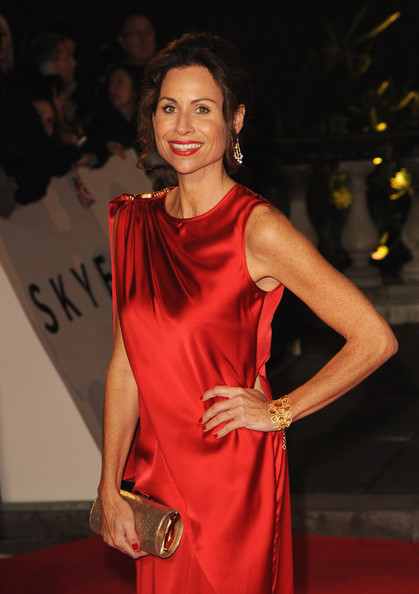 More Pics of Minnie Driver Evening Dress (1 of 5) - Minnie Driver Lookbook - StyleBistro