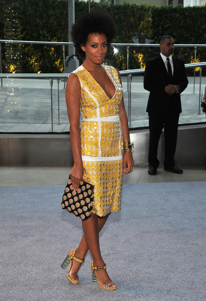 Solange Knowles Frame Clutch
