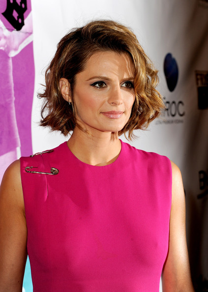 Stana Katic Hairstyle Hair Color Picture