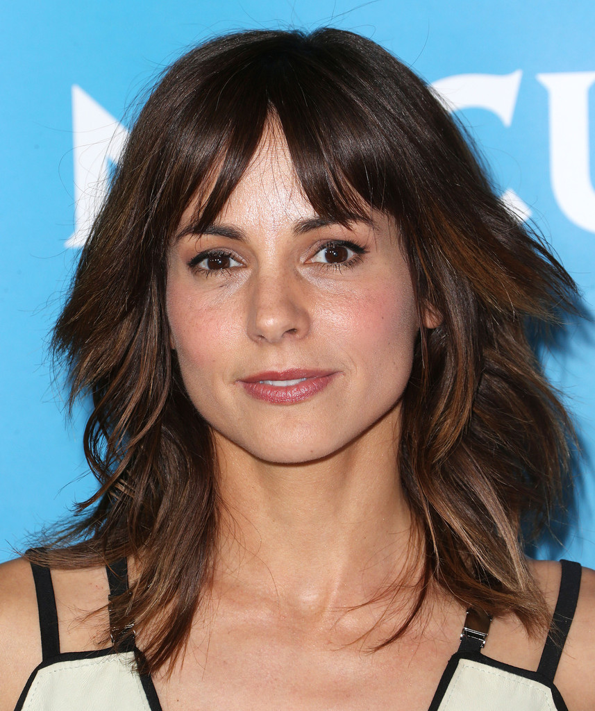 stephanie szostak net worth