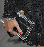 Astrid paired her lace dress with a clear box clutch.