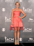 Who Was the Best Dressed at the 2014 American Country Music Awards?