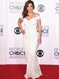 Who Was Best Dressed at the 2015 People's Choice Awards?
