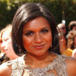 Mindy Kaling Style