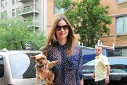 Hollywood's Stylish Dog Lovers