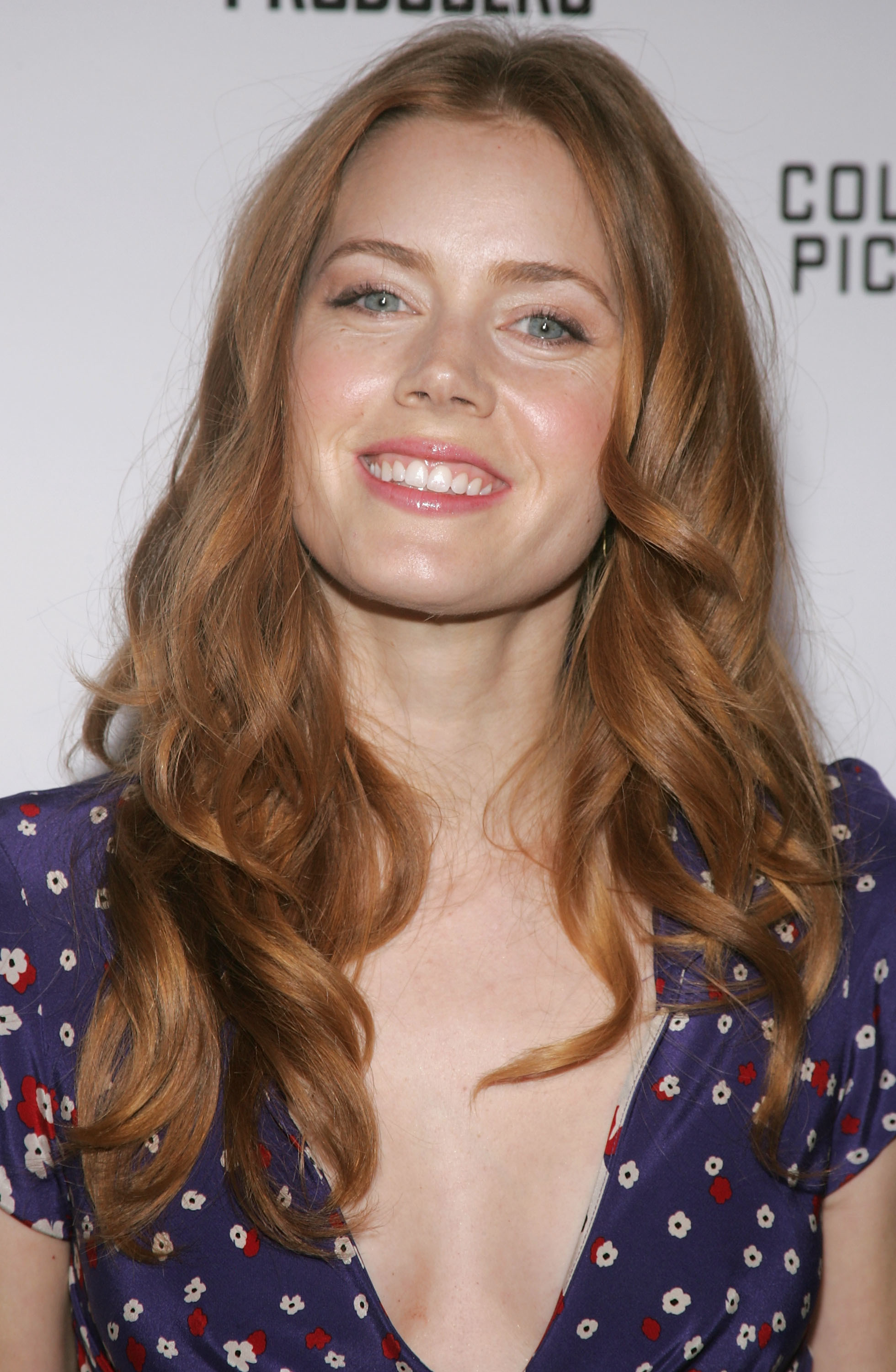 Amy Adams 2005 Celebrities Who Haven T Changed Their