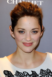 Marion Cotillard wore her hair in a voluminous updo at the Chaumet Cocktail Party in Paris.