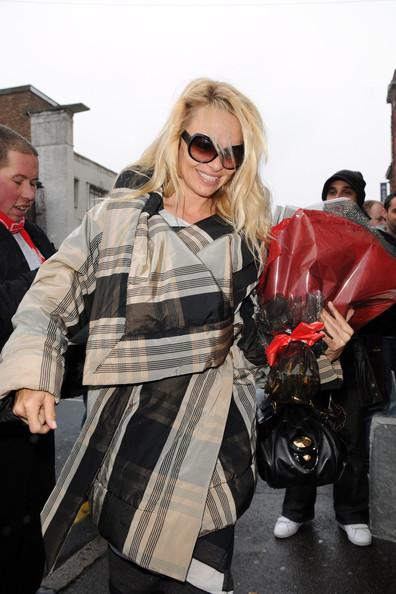 Pamela Anderson Butterfly Sunglasses