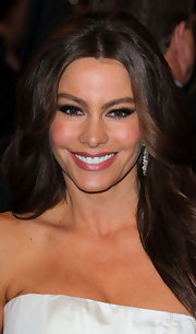 Sofia Vergara was a smoky sensation at the 2011 Met Gala. The actress added a smoldering touch to her look with high impact lashes and smoky shadow.