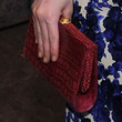 Amanda Hearst Handbags - Frame Clutch