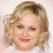 Amy Poehler Hair - Bobby Pinned updo