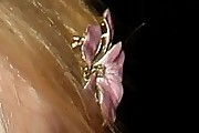 Dakota Fanning Flower Brooch