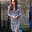 Kate Middleton Clothes - Wrap Dress