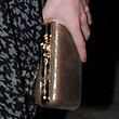 Princess Beatrice Hard Case Clutch
