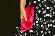 Emmy Rossum Satin Clutch