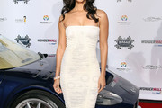 Roselyn Sanchez Cocktail Dress