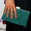 Selita Ebanks Handbags - Frame Clutch