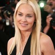 Sharon Stone Hair - Long Center Part