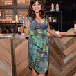 Tiffani Thiessen Print Dress