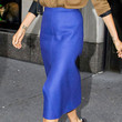 Victoria Beckham Clothes - Knee Length Skirt